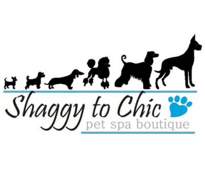 Shaggy to Chic - Pet Spa Boutique